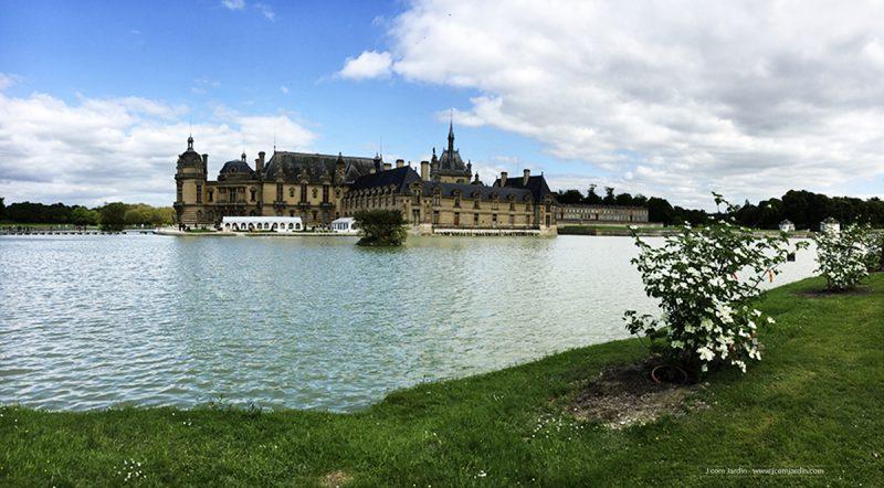 Vue sur le château de Chantilly et son lac avec Cornus kousa devant