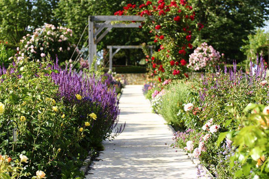 Styles de jardins - jardin aux bordures fleuries de vivaces et de roses
