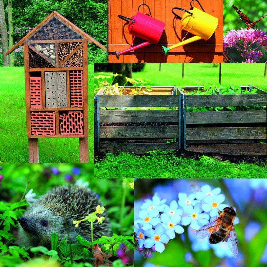 jardin dans le respect de la nature, hôtel à insectes, compost, respect des animaux