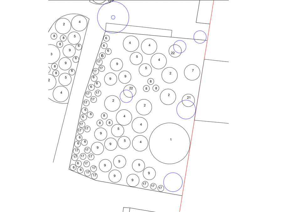 exemple de plan de plantation détaillé