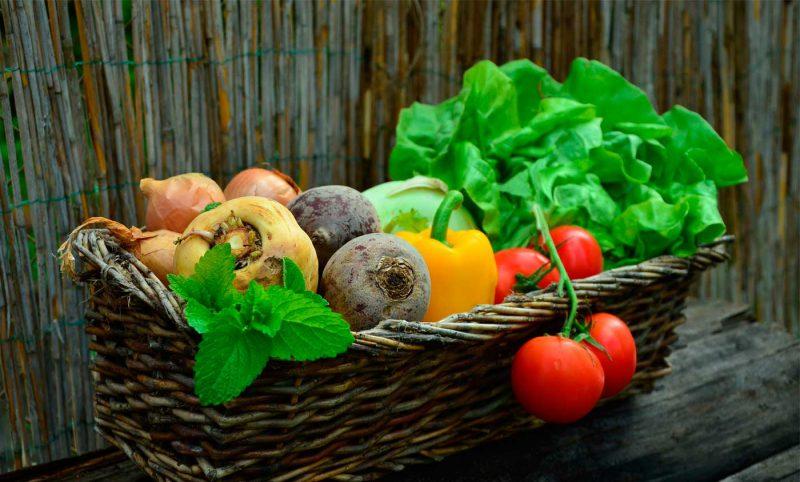 Panier avec des légumes pour le blog de j com jardin