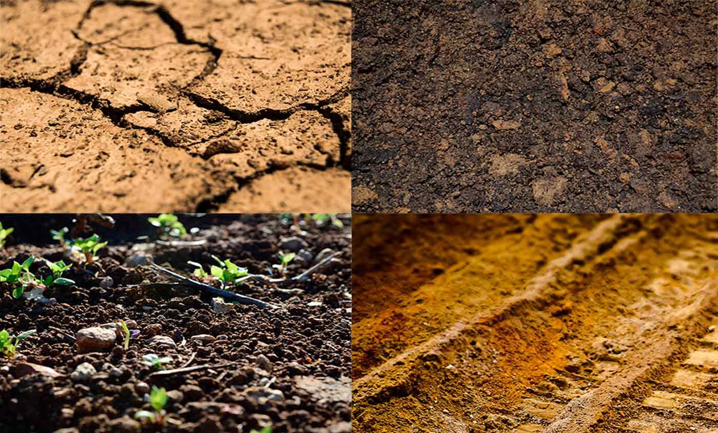 Reconnaître sa terre - différentes terres